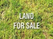 4 PLOT OF LAND FOR SALE SAND FILLED FENCED ON ORCHILD ROAD CHEVRON LEKKI LAGOS. PRICE: N50M PER PLOT ASKING.